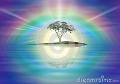 amazing-yellow-sunset-sky-clear-blue-sky-rainbow-halo-nature-wallpaper-tree-silhouette-sun-burst-rays-branches-colorful-cloudy-sky-calm-water-mirror-reflection-romantic-background-mood-meditation-tranquil-solitude-spiritual-release-magical-harmony-purity-background