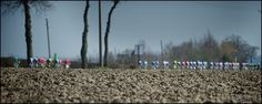 Pointy end of the race at Gent Wevelgem - Photo by Kristof Ramon Uci World Tour, Pro Cycling, Racing, Tours, Sport, Classic, Running, Derby, Deporte