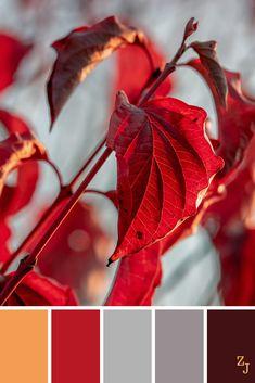 ZJ Colour Palette 931 #colourpalettes #colourinspiration Nature Color Palette, Design Palette, Colour Pallete, Color Palettes, Colour Combinations Fashion, Color Combinations, Color Schemes, Color Harmony, Color Balance
