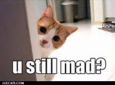 u still mad?