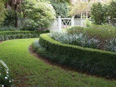 Residential Landscape Projects - traditional - Landscape - New Orleans - Landscape Images Ltd
