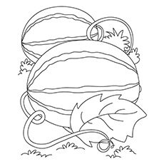 Watermelon Coloring Pages Watermelon Coloring Page 1