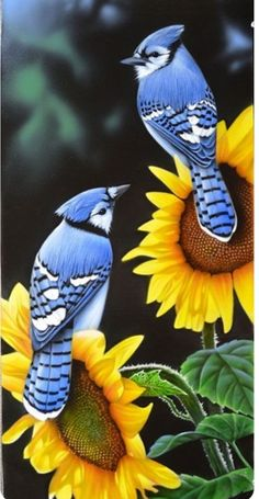 New mountain blue bird animals 29 Ideas Pretty Birds, Love Birds, Beautiful Birds, Animals Beautiful, Animals And Pets, Baby Animals, Cute Animals, Nature Animals, Wild Animals