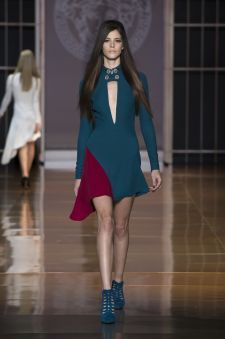 Women's fashion and accessories - FW 2014 - Fashion Show Collection - Versace 2014
