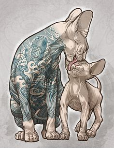 Blue - cat tattoo - sphynx - Eilert Janßen (Eilert Janssen) - based on a photo by Fran Veale Art And Illustration, Sketch Manga, Street Art, Kitty Tattoos, Tattoo Cat, Sphynx Cat Tattoo, Lioness Tattoo, Cat Art, Amazing Art