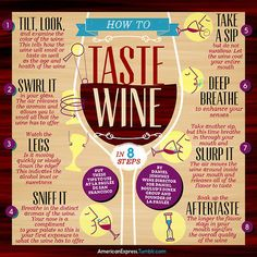 How to Taste Wine in 8 Steps infographic