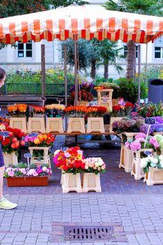 The flower market in Heidelberg Germany on the Hauptstrasse