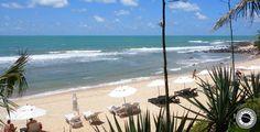 Praia do Giz, Beach in Pipa, Brazil