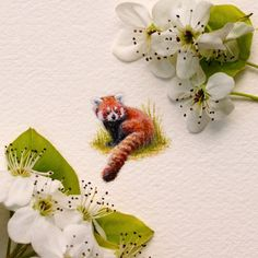 Red Panda. One Of My Earlier Works- But Still One Of My Favourites.