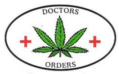 #w33daddict #StickersArt #StickersAddicts #CannabisStickers #Stickers #Logos #Cannabis #Marijuana #Hash #Hemp #Weed #Blunt #Joint #Amsterdam #CoffeShops #Reefer #Stoners #Smokers #Drugs #Pot #IWillMaryMary #iDabs #710 #420 #GorillaDabz #420Science #NugLife #PinUp #SkateBoarding #Skulls #Zombies #VynilDisorder #Self33 #HighHopesCreation #RockinStickers