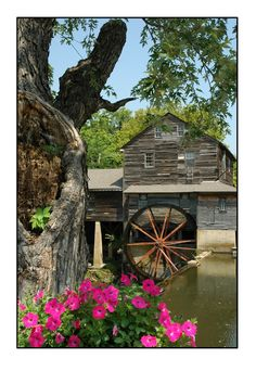 You'll find delicious food at the Old Mill in Pigeon Forge