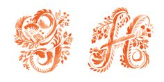 Floral Alphabet by Jill De Haan, via Behance Flower Typography, Creative Typography, Typography Fonts, Graphic Design Typography, Drop Cap, Alphabet, Monogram, Behance, Calligraphy