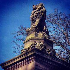 Inverleith Park, Edinburgh.