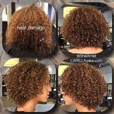 the blowfryer gave her major heat damage. haircut by Shai Amiel