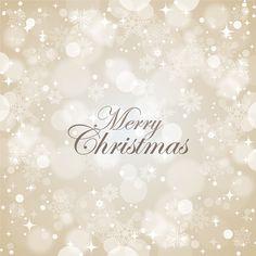 Merry Christmas! @southcoastplaza