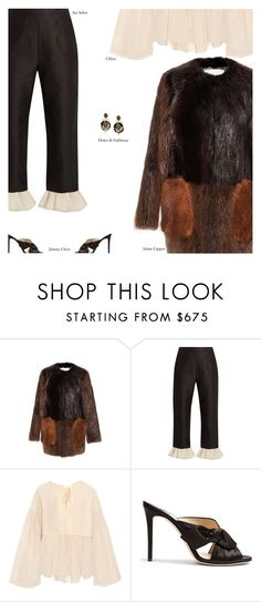 """""""Untitled #4343"""" by amberelb ❤ liked on Polyvore featuring ADAM, Isa Arfen, Chloé and Jimmy Choo"""