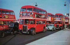 London buses 1955                                                       …