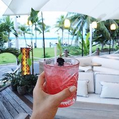 Hot days call for Carribean inspired cocktails at Relax on a daybed and watch the boats roll into the Crystalbrook Superyacht Marina in by Alcoholic Drinks, Cocktails, Looking Forward To Seeing You, Cairns, Barbados, Grapefruit, Instagram Posts, Sophisticated Style, Daybed