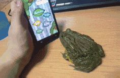 Never try to trick a frog…GIF click on image