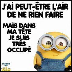 Risultati immagini per citations minions Minion Humour, Minion 2, Cute Minions, Citation Minion, Quote Citation, Image Fun, French Quotes, Minions Quotes, Funny Images