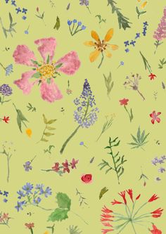 Wild floral | Isabelle Sykes | ISYKLE