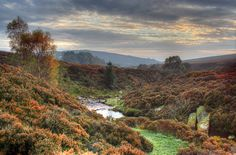 Google Image Result for http://www.explorebritannia.co.uk/wp-content/uploads/2010/07/North-York-Moors.jpg