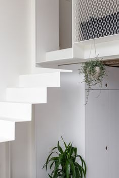 Fetis is a minimal house located in Brussels, Belgium, designed by AUXAU. The project transforms and enlarges a small house located in the center of Brussels. The architectural intervention is limi. Mini Clubman, Contemporary Architecture, Architecture Details, Stair Handrail, Minimal Home, Single Sheets, Easy Paintings, Home Decor Items, Minimalism