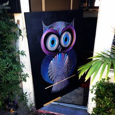 Owl string art - love how the colors pop!