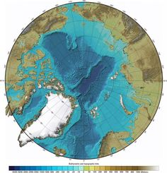 Arctic Ocean Bathymetry Map- no words to connect to LYL just yet just don't want to lose the visual :-) Ancient Aliens, Ancient History, North Pole Map, Ice Warriors, Before The Flood, Arctic Circle, View Map, Ancient Civilizations, Historia