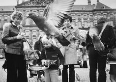 Leonard Cohen in April 1972 in Amsterdam, Netherlands, by Gijsbert Hanekroot
