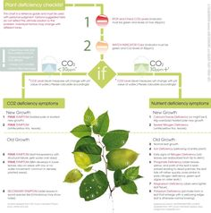 plants nutrient deficiency symptoms STICKY