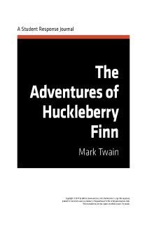 I'm writing an essay on Huck Finn help please?