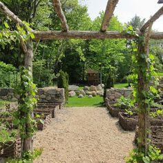 kitchen garden off veranda
