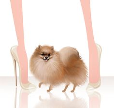 I have three Poms.. Lily, Koko and Chloe and yes they are the bestest of bestest kids ever....