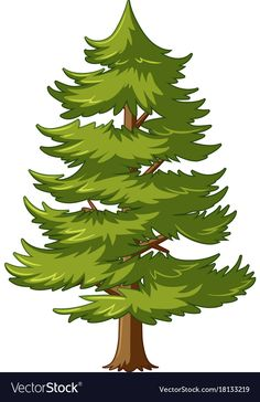 Pine tree with green leaves vector image on VectorStock Inkscape Tutorials, Drawing Lessons For Kids, Tree Clipart, Best Photo Background, Landscape Concept, Celtic Tree, Forest Illustration, Leaves Vector, Pine Tree