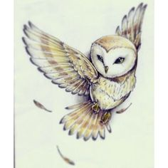 Cute Barn Owl Tattoo ❤ liked on Polyvore featuring accessories и body art
