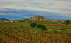 Rioja vines and village