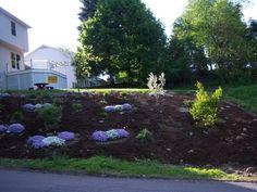 front slope garden