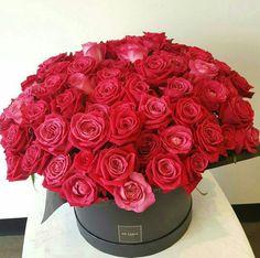 Букет из 85 красных роз значение фиолетовая букете уход