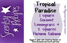 Scentsy Recipe! Tropical Paradise https://michellebrady.scentsy.us