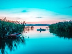 If you are visiting Budapest in summer, take a perfect day-trip to Lake Balaton, Hungary and thank me later! Dubbed as Hungarian Sea, about 50 miles long. Lakeside Resort, Visit Budapest, Family Destinations, Group Tours, Most Visited, Outdoor Fun, Day Trip, Where To Go, Hungary