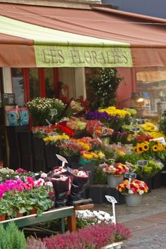Le croissant d& Flower Cart, My Flower, Flower Power, Flowers For Sale, Beautiful Flowers, Simply Beautiful, Flower Shop Decor, Flower Shops, Nothing But Flowers