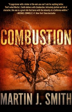 Combustion   Martin J. Smith   9781626819207   NetGalley
