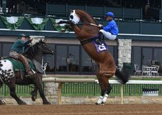 Harley does his job well......this is an amazing capture at Keeneland Yikes! @ABeschizza barely batted an eye when this tough two-year-old tried to mess with Harley. Frances J Karon