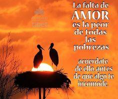 154 Mejores Imágenes De Fe Amor Esperanza Pensamientos Te