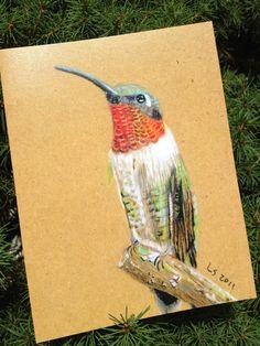 Hand illustrated native bird cards. Original art by Lynn Starnes via Etsy.
