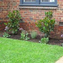worked by stone edge landscapes Potager Garden, Cardboard Furniture, Lanai, More Photos, Garden Inspiration, Beautiful Gardens, Outdoor Spaces, Garden Design, Outdoor Structures