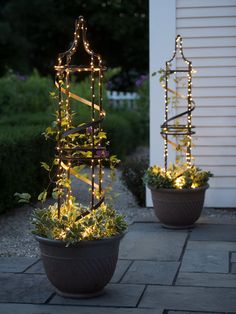 Nocturne Plant Pot Obelisk Trellis with plugin fairly lights Tall Potted Plants, Patio Plants, House Plants, Indoor Plants, Hanging Plants Outdoor, Front Yard Plants, Potted Flowers, Metal Flowers, Planting Flowers