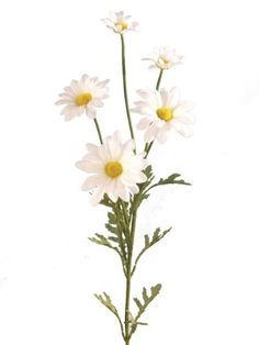 Artificial Silk Daisy Marguerite Spray Single Stem - 74cm, White