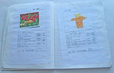 Science Journal - Living or non-living  zac 1st grade